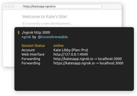 Mostrar tu servidor local a Internet: Ngrok